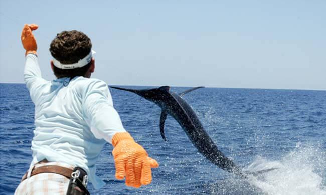 sportsfishing.jpg