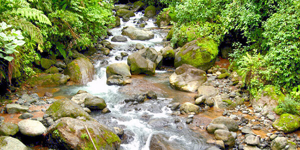 Eco-friendly Costa Rica