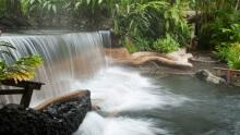 Visit to Hot Springs