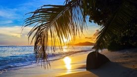 Why Choose Costa Rica?