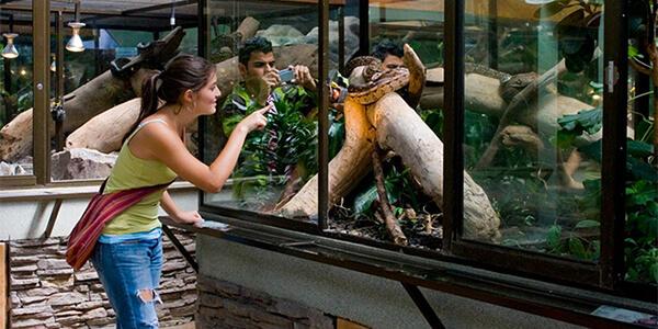 Serpentarium Visit