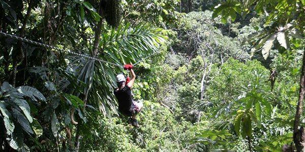 Caribbean Jungle Adventure