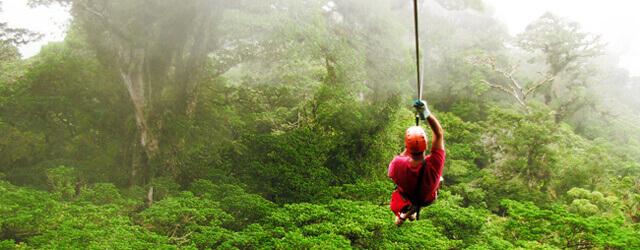 congo-trail-canopy.jpg
