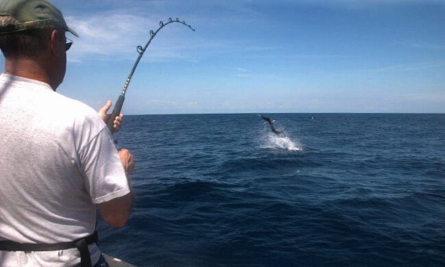 costa rica fishing - deep sea fishing