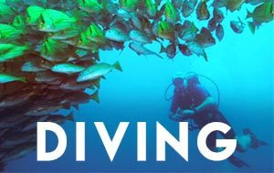 Scuba Diving Vacations in Costa Rica